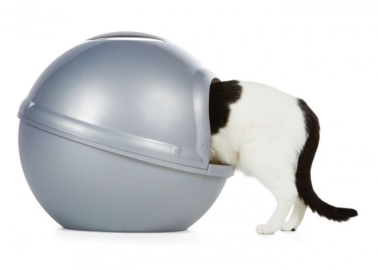 CoryVanNote-Portfolio-2016-PetSmart-BrandShoot-Cat-InLitterBox