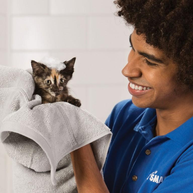 CoryVanNote-Portfolio-2016-PetSmart-ServicesShoot-Grooming-KittenBath