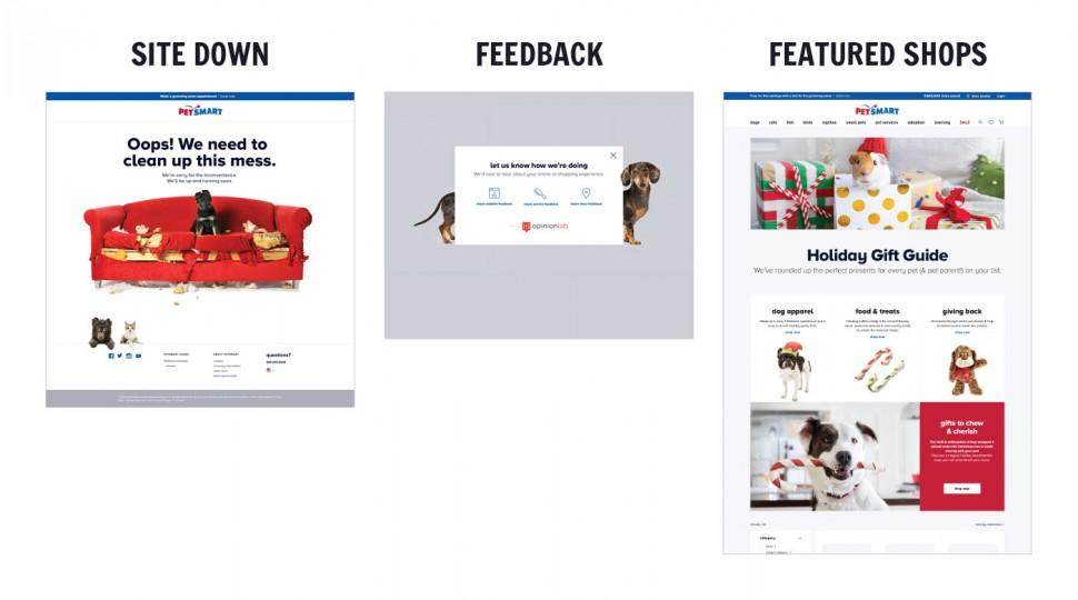 CoryVanNote-Portfolio-2016-PetSmart-WebRedesign-Pages4